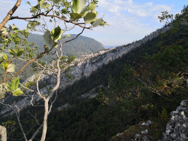 Vereinsreise TV im Mont Raimeux Gebiet